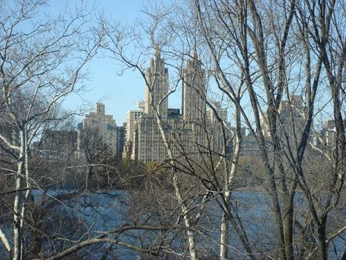 NYC Dec 184