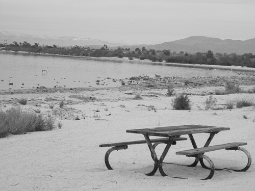 Palm Springs Salton Sea