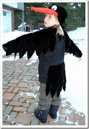 407px-Raven-back