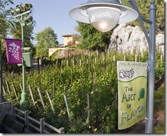 CELEBRATING 'THE ART OF  FLAVOR': Disney&#8217;s California Food &amp; Wine Festival celebrates its fifth anniversary in 2010 with a new theme, &#8220;The Art of Flavor.&#8221; This exciting festival runs from April 16 through May 31 and features hundreds of complimentary experiences included with park admission. Guests will enjoy entertaining culinary demonstrations with Disney chefs and celebrity chefs; wine, beer and spirits seminars; and delicious food and wine.  For more information, visit www.disneyland.com/foodandwine.