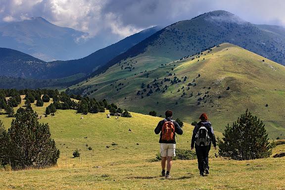 Cim del Pla de Pujals (2.055m ) serra de Montgrony, vista des del vessant est del Pedra Picada, sota, el coll del Remoló,  muntanya i pastures de Nevà, Toses, Ripollès, Girona