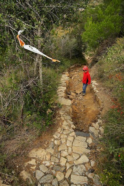 Camí vell de l'Argentera al castell d'Escornalbou, camí de ferradura.L'Argentera, Baix Camp, Tarragona