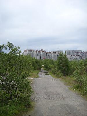 茂みの中の小道
