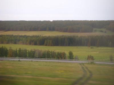 西シベリア平原