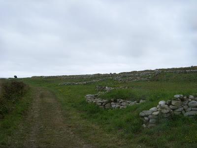 小石を積み重ねた石垣