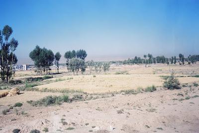 砂漠の中の街