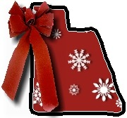 Christmas blanket L