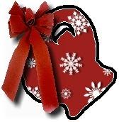 Christmas blanket Q