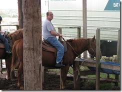 5288 Island Equestrian Center South Padre Island Texas