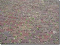 0230 Mount Vernon IA Original Brick Lincoln Highway