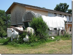 0722 Covered Wagon & Concrete Oxen west of Kearney NE