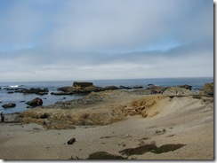 3607 Glass Beach Fort Bragg CA