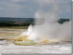5534 Clepsydra Geyser Yellowstone National Park