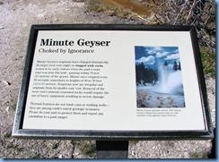 9153 Minute Geyser Norris Geyser Basin YNP WY