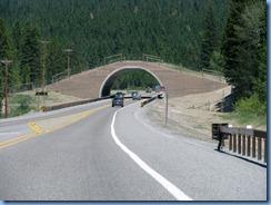 9394 Animal Bridge on US 93 MT