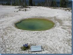 9022 Ephedra Spring West Thumb Geyser Basin YNP WY