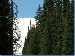 1069 Mount Rainier National Park WA