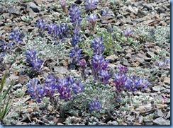 1432 Rim Road Crater Lake National Park OR