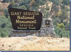 2304 Giant Sequoia National Monument CA