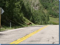 4520 Mule Deer Scenic Byway 12 UT