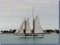 7308 Key West FL - Conch Tour Train 1st stop back at Mallory Square view from lunch table