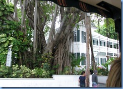 7317 Key West FL - Conch Tour Train - Harry S. Truman Little White House