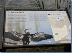 7391 Everglades National Park FL- Royal Palm Anhinga Trail