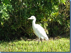 6929 near Travelodge Florida City, FL