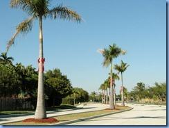 7010 Cutler Bay  FL walk
