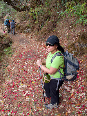 Farah on the Red Rhododendron Trail