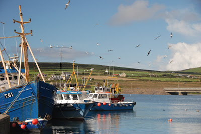 Portmagee - boats to visit Skelligs. From Driving Ireland's Ring of Kerry: Take a Detour