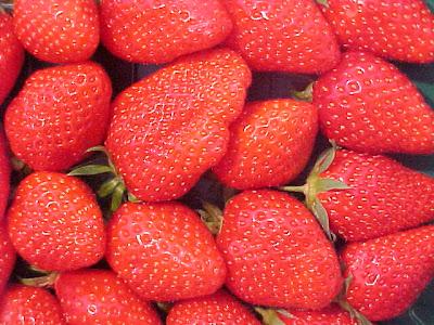 Gariguette strawberries