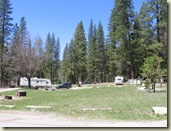 Wawona campground Yosemite5