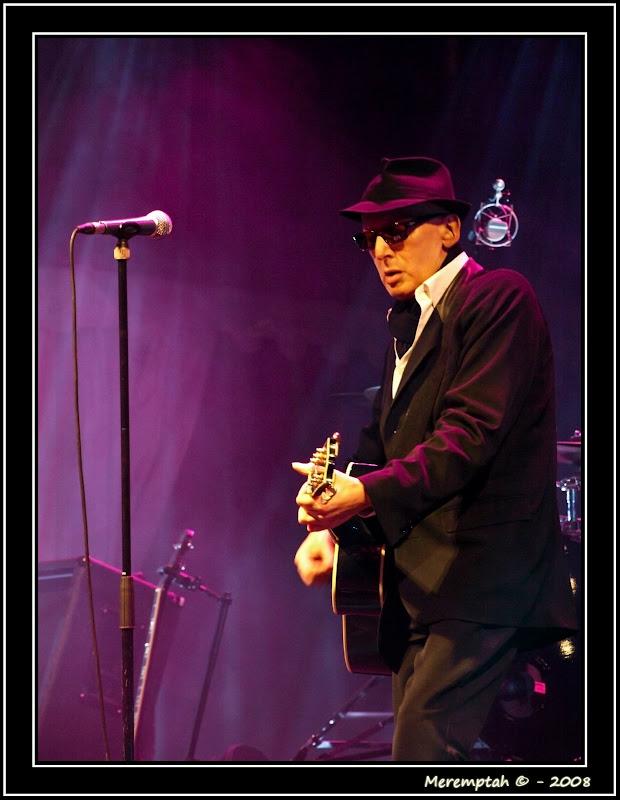 Alain Bashung Nice Jazz Cimiez Guitare 2008