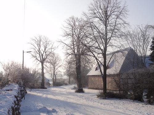 Vinter 2010 008