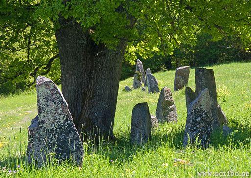 Kvarnbofältet eller Lillängen med Bautastenar
