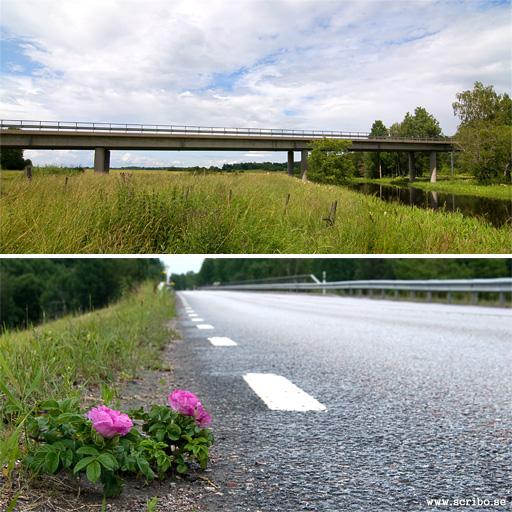 Landsvägsbron över Fyrisån vid Ekeby