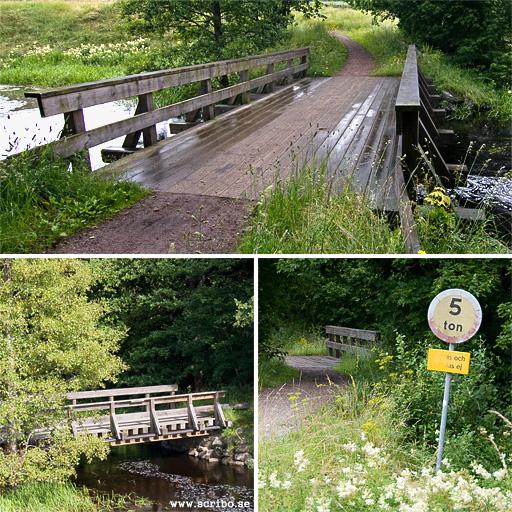 Fäbron i Vattholma, Fyrisån