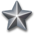 Silver-service-star-3d