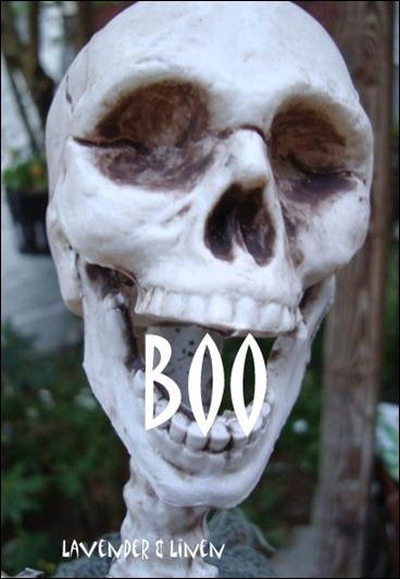 Halloween 2010 184-1