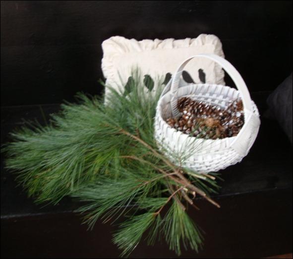 christmas cactus 013