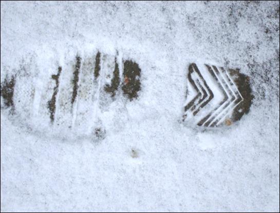 Dec. 26, 2010 - snow 033
