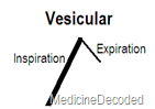 vesicular sound
