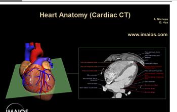 e-anatomy