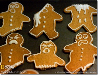 gingerbread-men-cookie serial killer