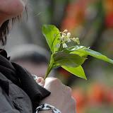 Fête du Muguet à Chalamont : Florilège 2007 à 2010