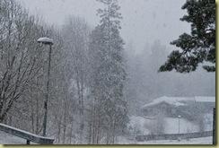 2010-05-04 Snowing 1