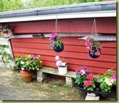 Flowers and Platform