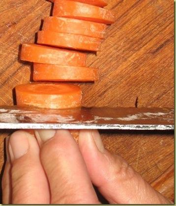 D5 - chopped carrots