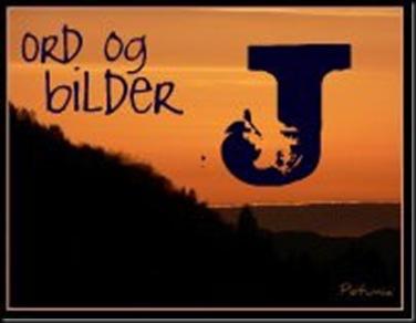 J - logo